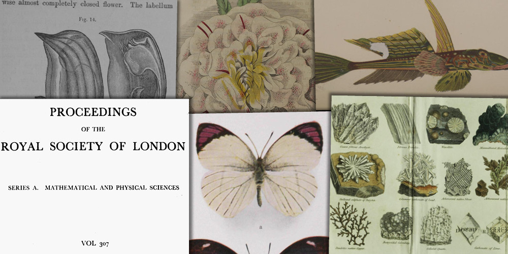 Various source media, Nineteenth Century Collections Online: Science, Technology, and Medicine, Part II