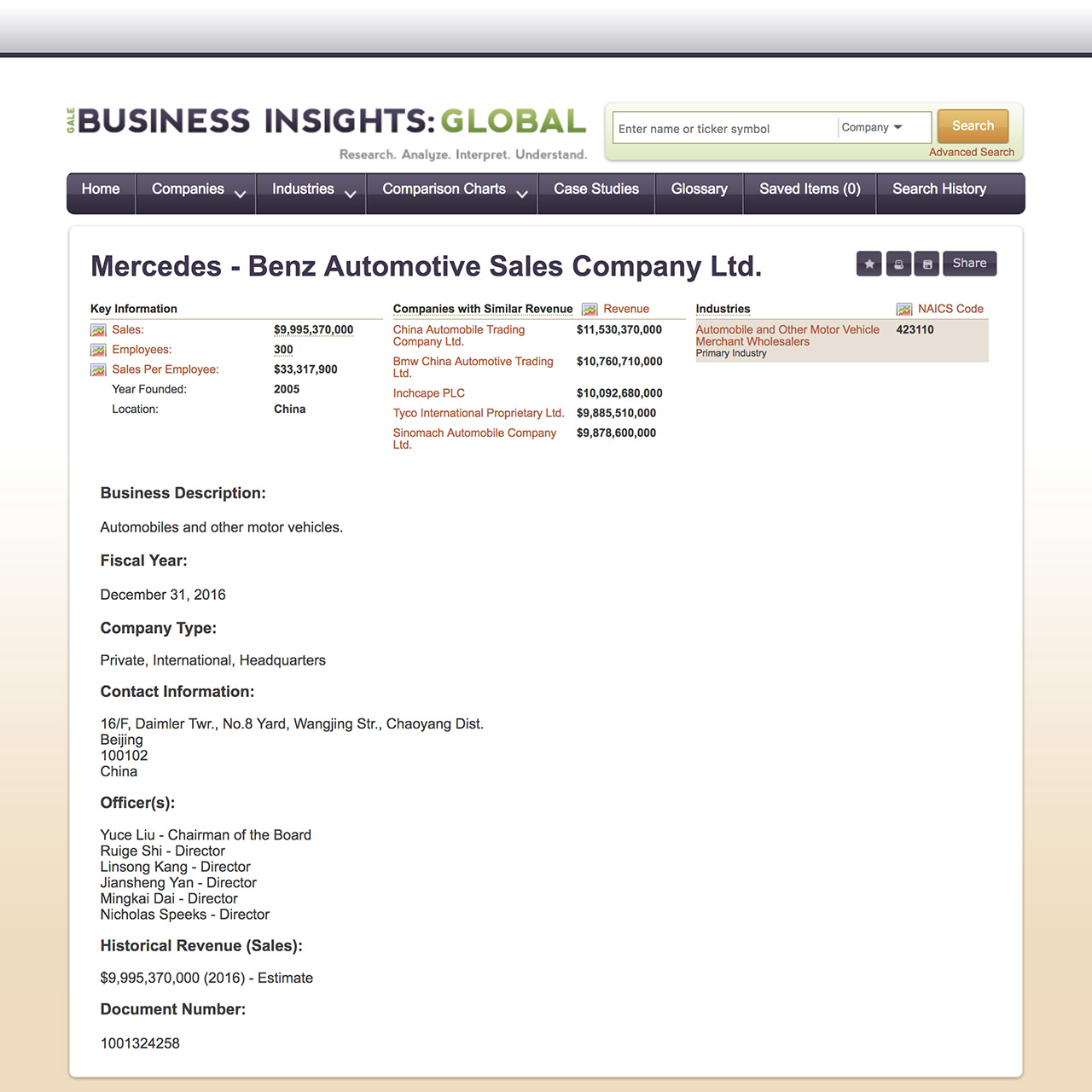 Business Insights Global Company Information