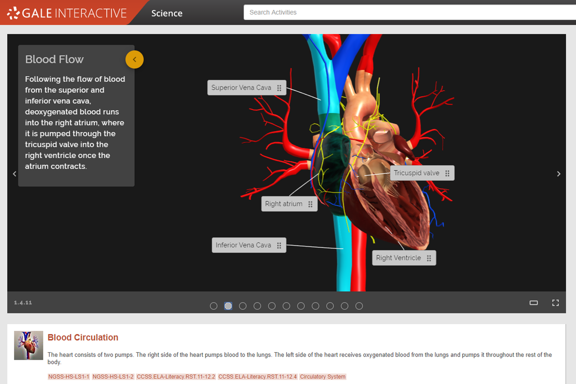 Gale Interactive Science Heart Model