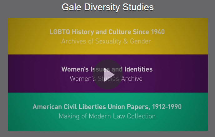 View the Video on Diversity Studies