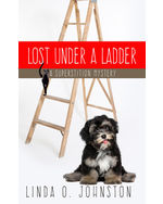 Lost Under a Ladder